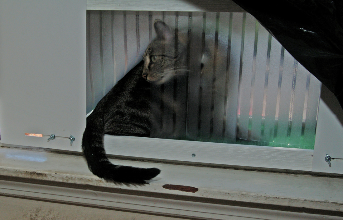 Order Page R3 Cat Window Patios From Cwaa Crafts